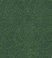 Summer Comfort Grass